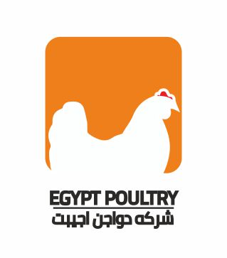 Egypt Poultry